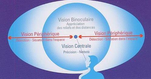 vision périphérique