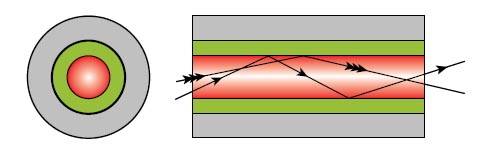 Multimode optical fibers
