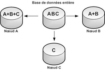 Figure 6: Bases de données distribuées hybrides. Source [Img6].