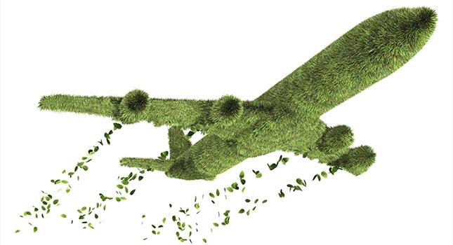 green plane 645