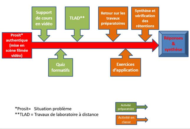 Évolution des activités dans le cours