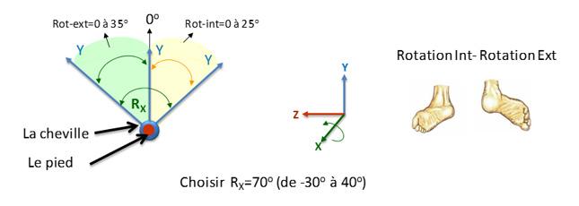 Figure4B