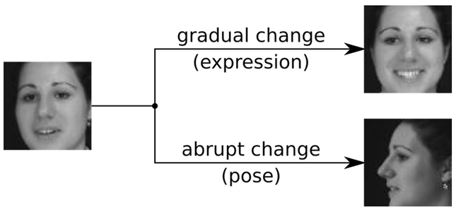 Figure 2: Example of gradual and abrupt changes in facial