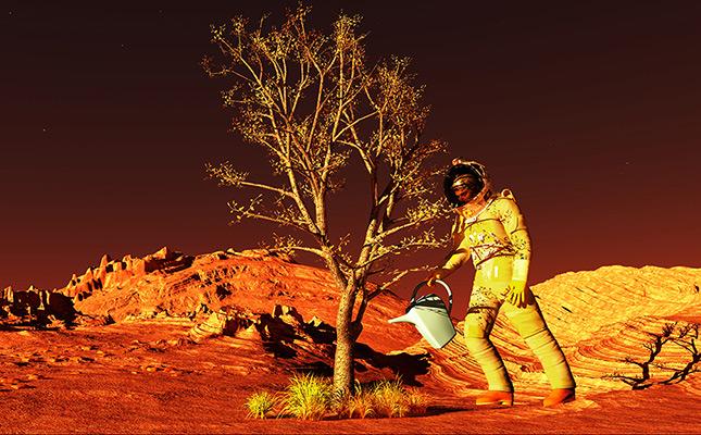 Photo illustrant article à propos de faire pousser des plantes sur mars