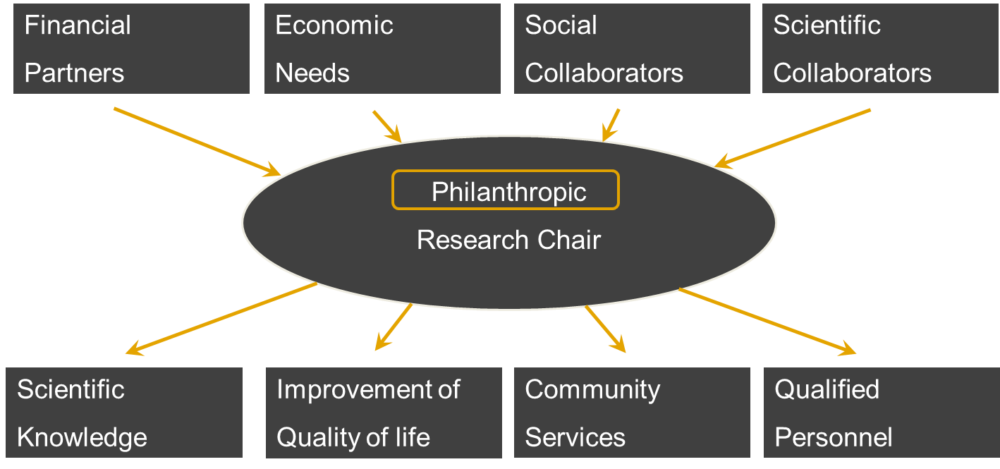 Fig 2. Input and output of a philanthropic research chair