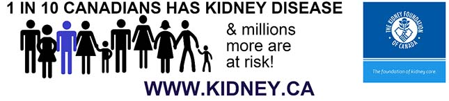 Artificial kidney: canadians (1 in 10) have kidney disease
