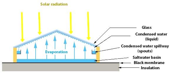 Operation of a solar still