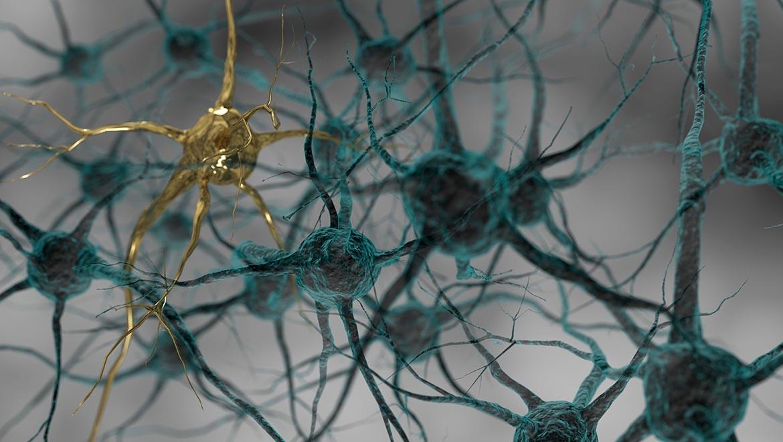 Intelligence-artificielle-imagerie-médicale-réseaux-de-neurones