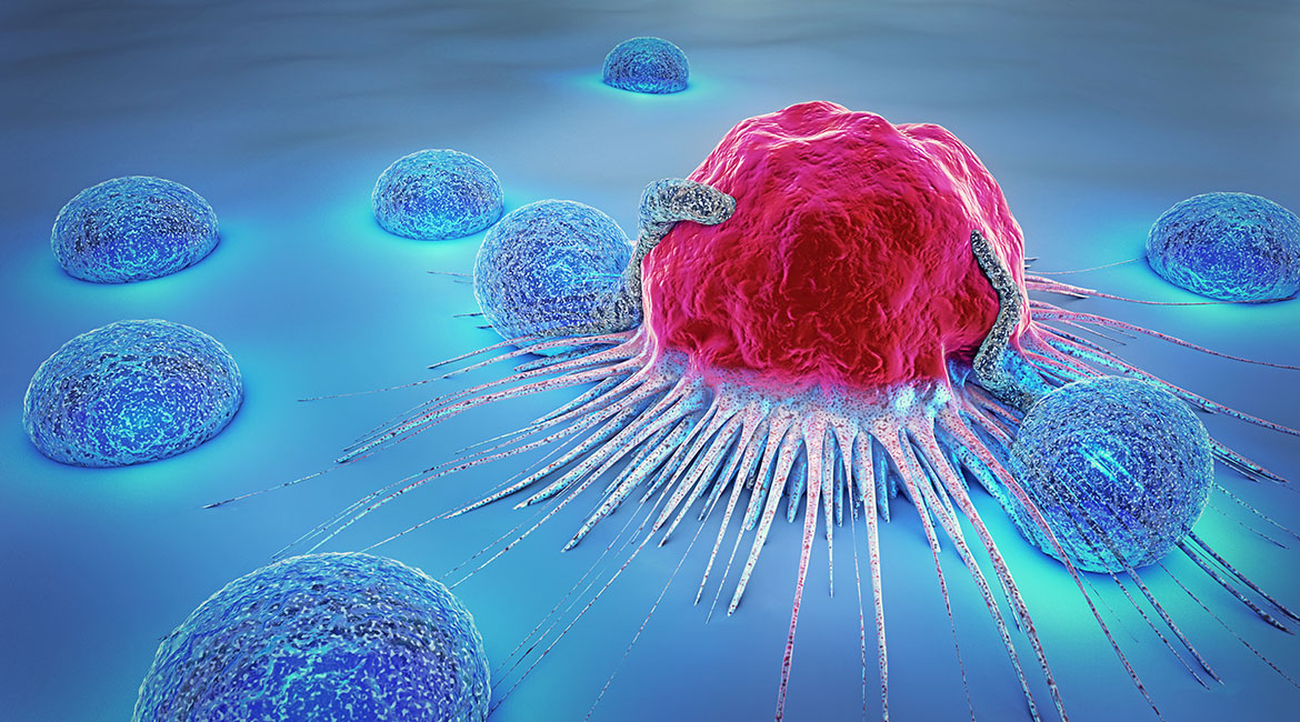 Nanorobots are able to eradicate cancer cells