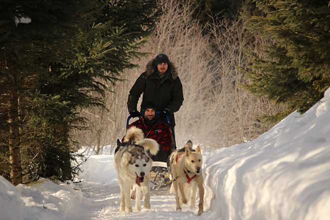 Student from France taking a break from his studies in Quebec to enjoy dogsledding in the Laurentians.