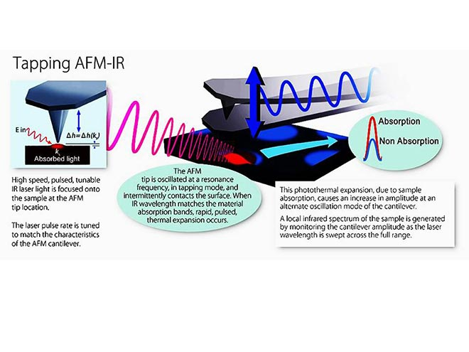 Operation of an atomic force microscope (AFM) coupled with a tunable pulsed laser (IR)