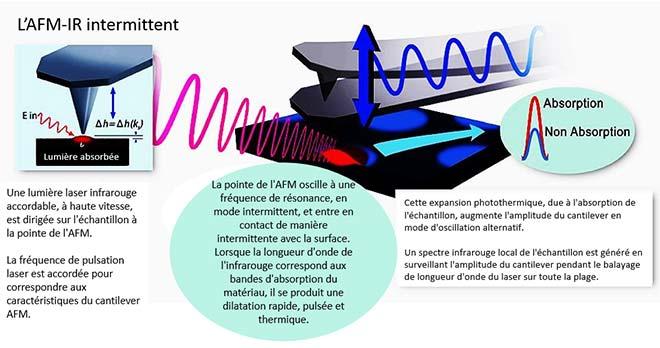Fonctionnement d'un microscope à force atomique (AFM) couple à un laser accordable pulsé (IR)