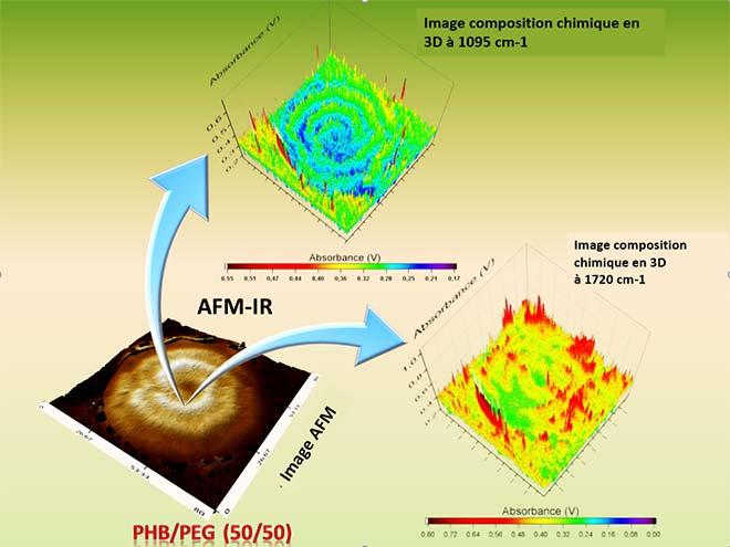 Composition des phases dans une structure de sphérulite
