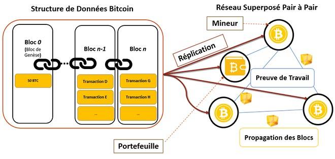 Schéma de l'architecture Bitcoin