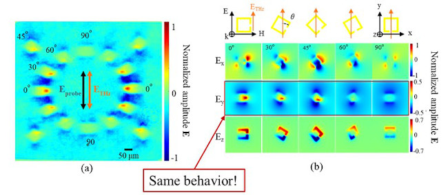 Determining electro-optic coefficient of a thin-films
