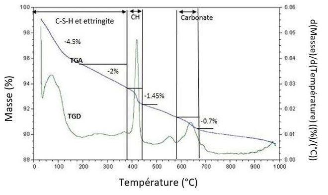 Analyse thermogravimétrique avant carbonatation