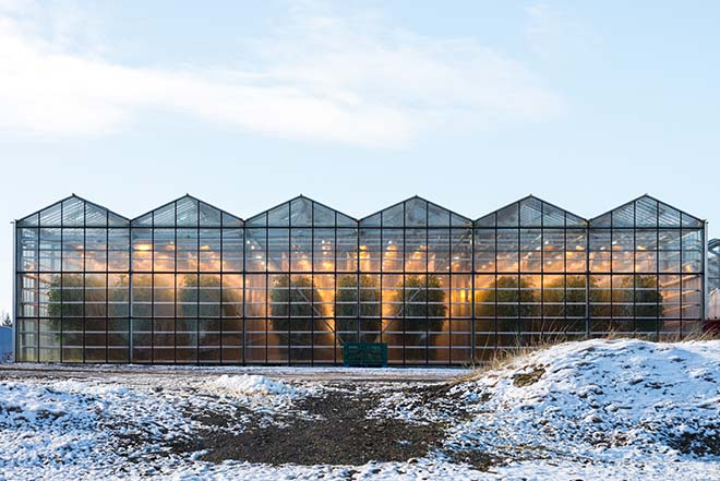 Greenhouse located in a Nordic climate