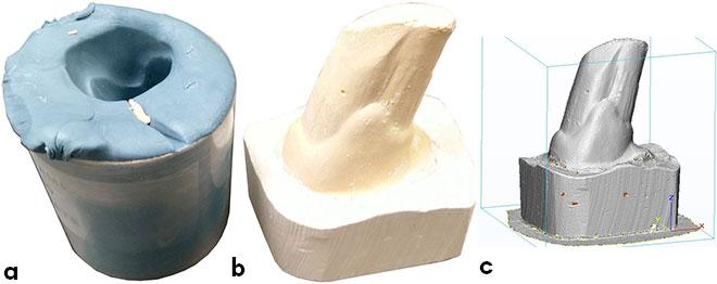 Prise d'empreinte, moulage en plâtre et modèle numérique de défense de morse