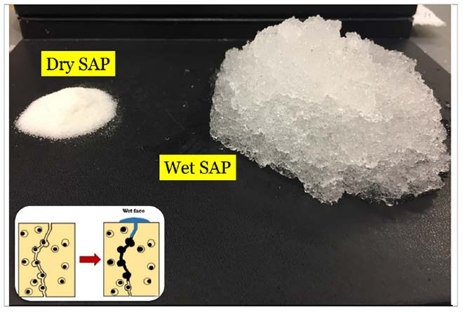 How much water can superabsorbent polymer absorb?