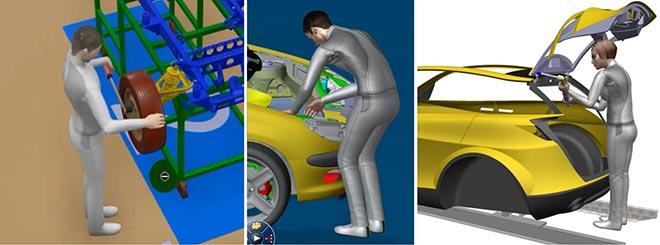 Digital human models