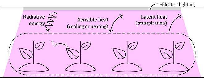 Crop-environment energy interaction