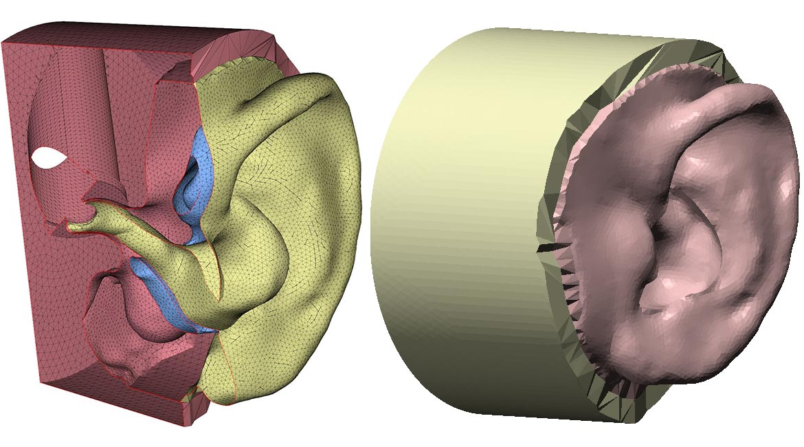 Digital model of an ear