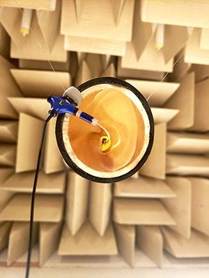 artificial ear designed by GRAM