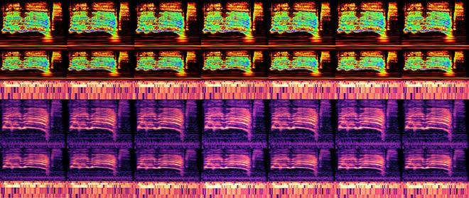 Spectrogrammes