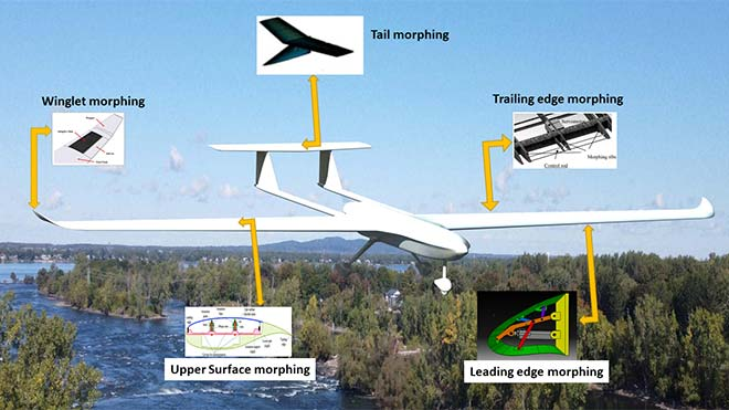 Morphing possibilities for a drone