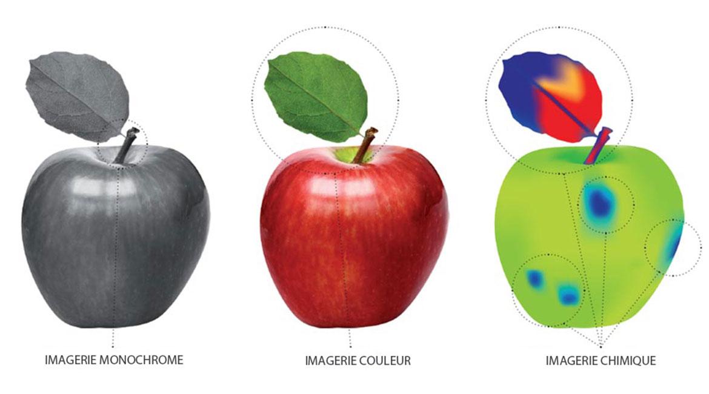 Image multispectrale